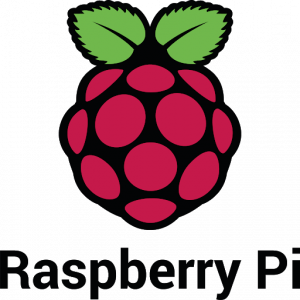 The Raspberry Pi company logo