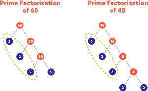 Diagram showing the prime factorization of 60 and 48