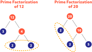 Diagram showing the prime factorization of 12 and 20
