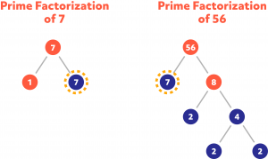 Diagram showing the prime factorization of 7 and 56